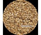 Солод карамельный ячменный Caramel EBC 200 (Viking Malt)