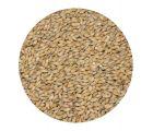 Солод ячменный Pale ale EBC 4-6 (Курский солод) 1кг